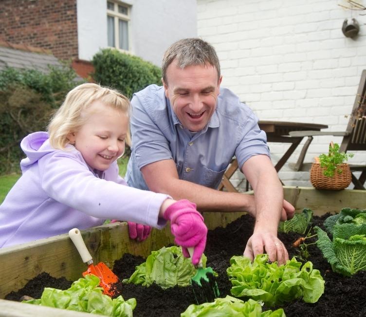 Tuto : Préparer un coin potager dans son jardin